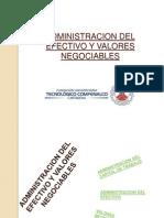 Administracion Del Efectivo y Valores Negociables- Cindy