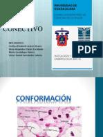 Histologia Del Tejido Conjuntivo
