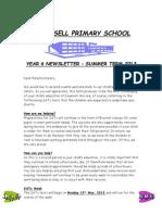 Year 6 Newsletter Summer 2013