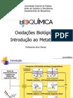 08 Oxidações PDF