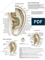 Ear Spine2auriculoterapia