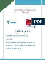 Aspel SAE X