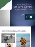 A produção do conceito Cultura (XSCS)