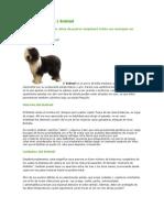 Nuevo Documento de Microsoft Word (5)