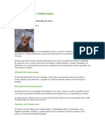Nuevo Documento de Microsoft Word (18)