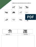 Animales Domesticos y Silvestres