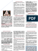 APOSTOLADO DE LA ORACIÓN - 2013 - 05