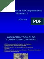Sesion 1 La Neurona1