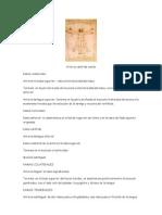 Anatomia Resumen Arterias