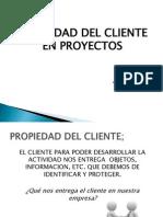 Propiedad Del Cliente