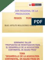 7 Region Puno
