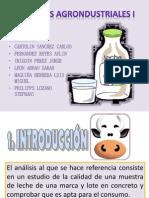 La Leche-procesos Agroindustriales i (1)