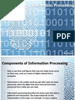 Information Processing CSEC IT