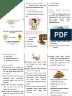 Leaflet Perawatan Luka Perineum
