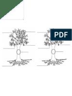 Completar Partes Planta
