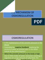The Mechanism of Osmoregulation