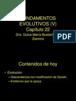 Fundamentos evolutivos 1