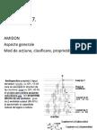 Amidon+Proteineffff