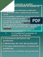 a7Teoria Costurilor şi Profitul