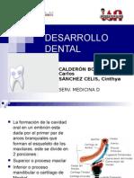 Desarrollo Dentario (Exposicion en el Instituto de Salud del Niño)