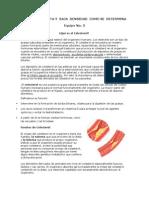 Colesterol Alta y Baja Densidad Como Se Determina Equipo 5.