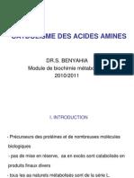 Catabolisme Des Acides Amines