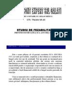 Studiu Fezabilitate Balan Bcit