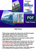 Tidal and Wave Power