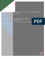 Posgrados en Formulacin y Evaliacin de Proyectos
