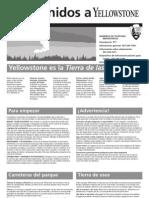 Yellowstone (Spanish Brochure)