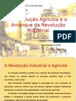 revoluoagricolaerevoluoindustrial-110630104413-phpapp01