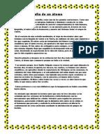 Calcio biografía de un átomo tarea de español para mañana
