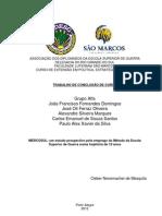 MERCOSUL_um estudo prospectivo pelo emprego do Método da Escola Superior de Guerra numa trajetória de 10 anos_Dissertação