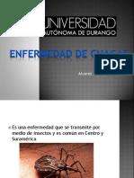 Enfermedad de Chagas Giselle