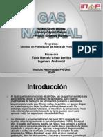 Exposicion de Gas Natural