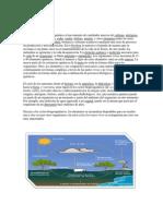 Los Ciclos Biogeoquimicos
