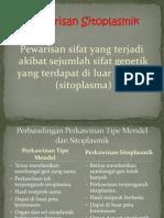 Genetika Kelompok 1-Pewarisan Sitoplasmik
