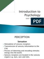 Psyc Unit 3 Perception