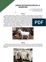 33-razas_cabras