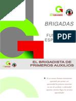 BRIGADAS P3
