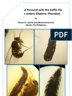 Up Close and Personal with the Coffin Fly.pdf