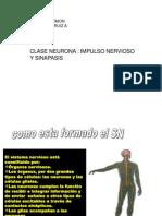 impulso_nervioso_sinapsis_3medio_2012.pps