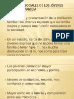 EXPECTATIVAS SOCIALES DE LOS JÓVENES ACERCA DE LA FAMILIA
