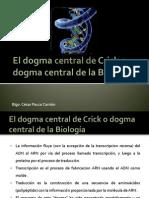 Transcripcion Del Arn - Copia