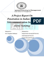 project report on pentration in indian rural telecom indusry
