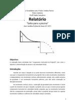 Relatório de fisico quimica.docx
