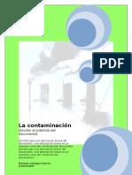 contaminacion ambiental. neisser