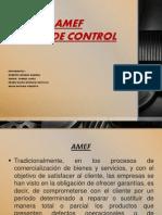 AMEF y Plan de Control