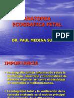 Anatomia Ecografica Fetal
