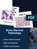 Bone Marrow PDF